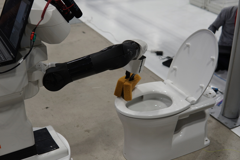 toilet_cleaning2
